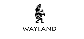 Wayland Publishers (Hachette Children's Group)