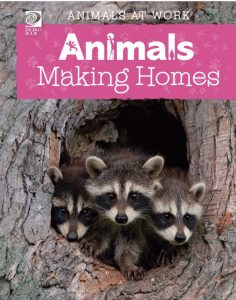 Animals making homes